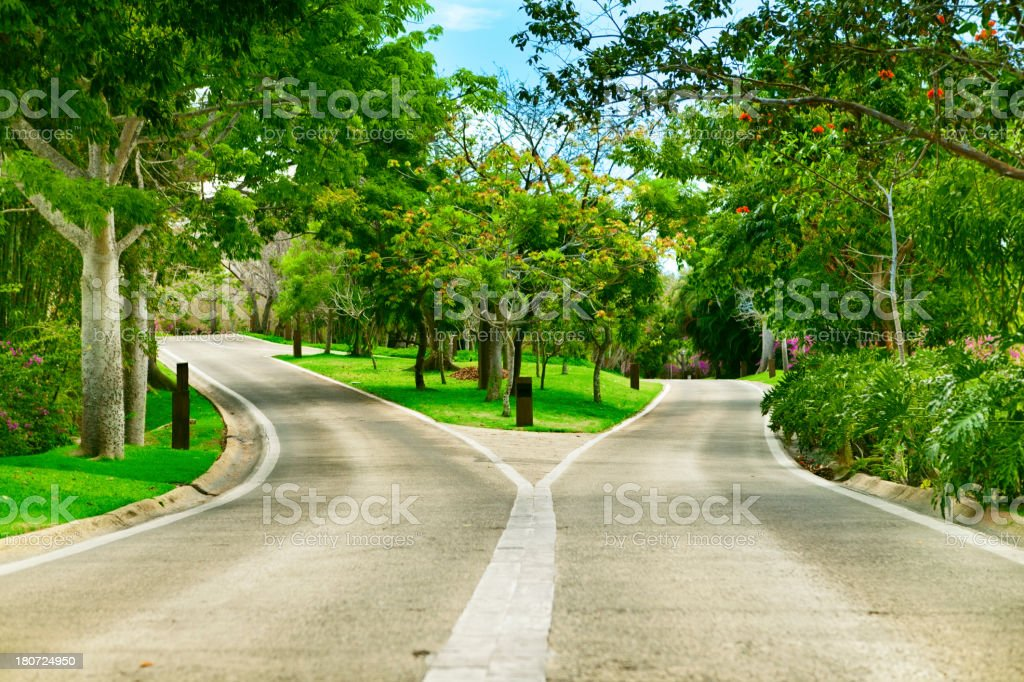 Fork in road royalty-free stock photo