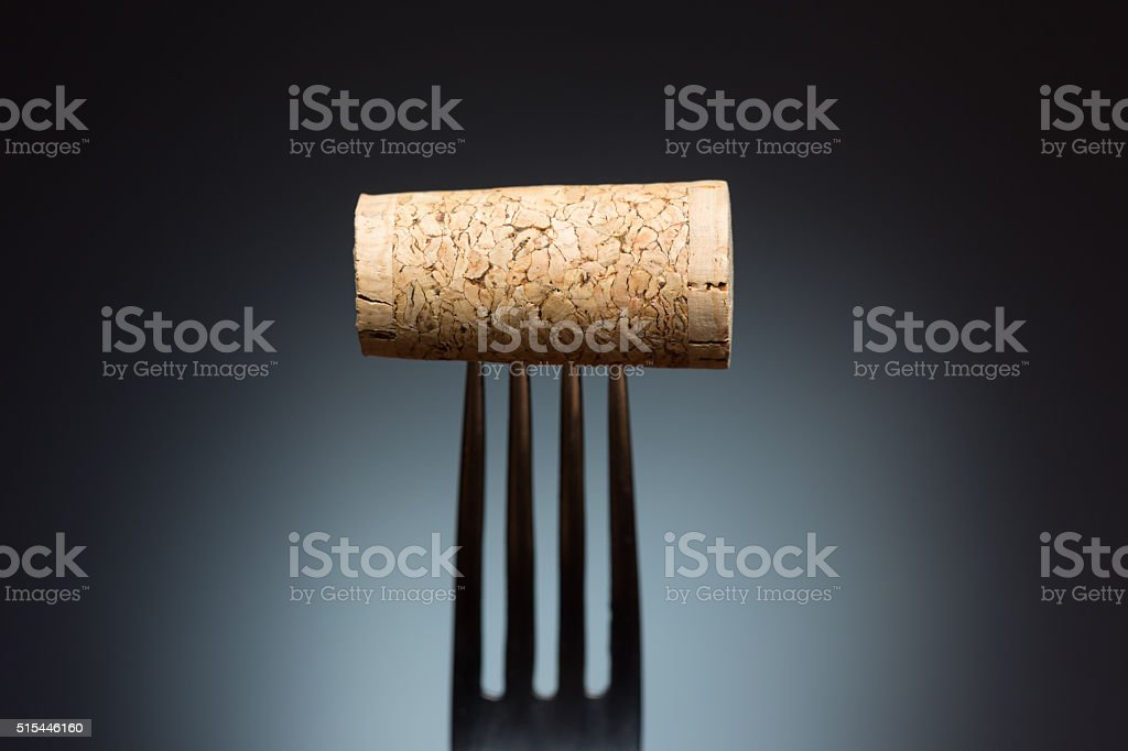 Fork with wine cork stock photo