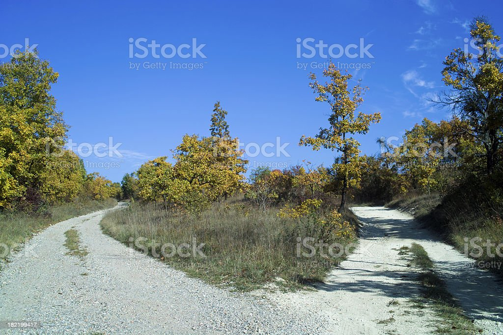 Forked road in autumn royalty-free stock photo