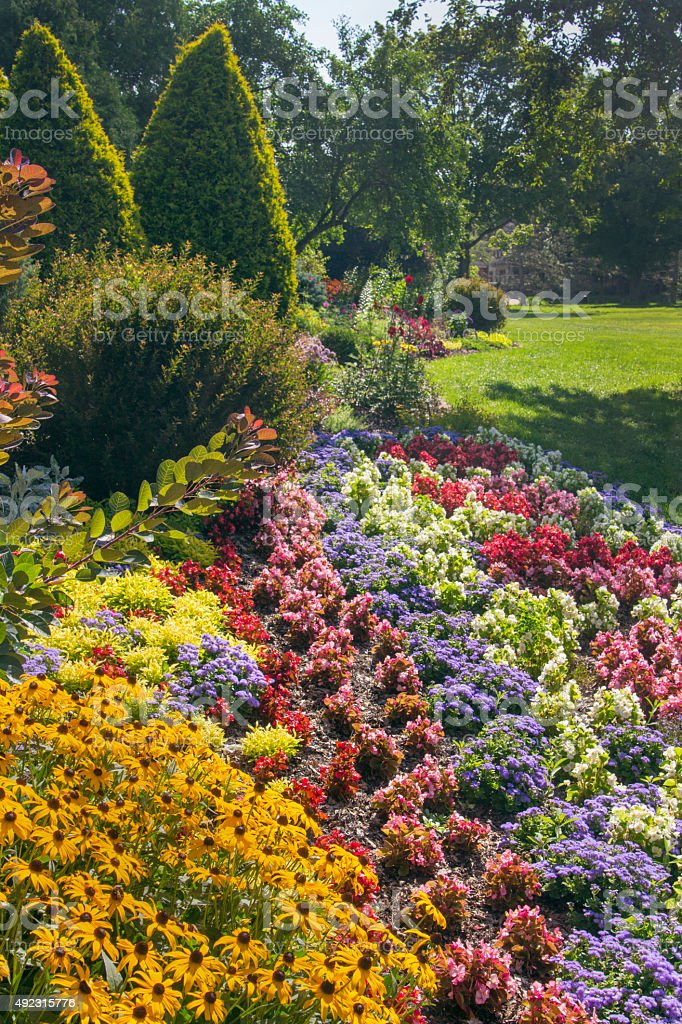 Formal Flower Garden, Manicured Plantings, and Trees in Park Landscape stock photo
