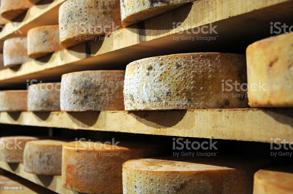 forms of fontina cheese stock photo