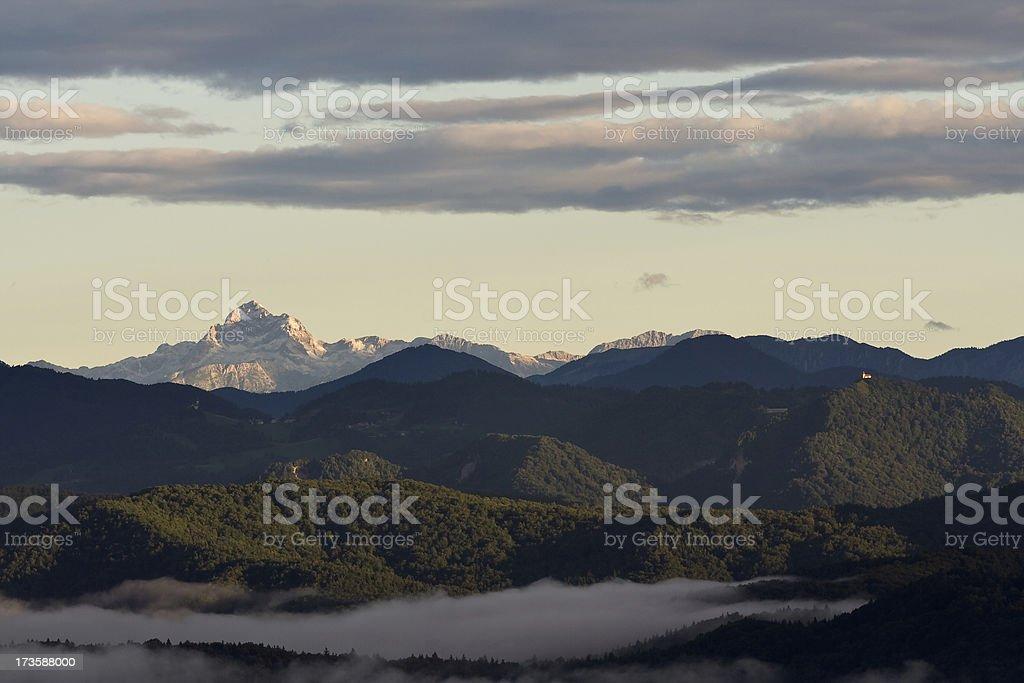 Forrest land royalty-free stock photo