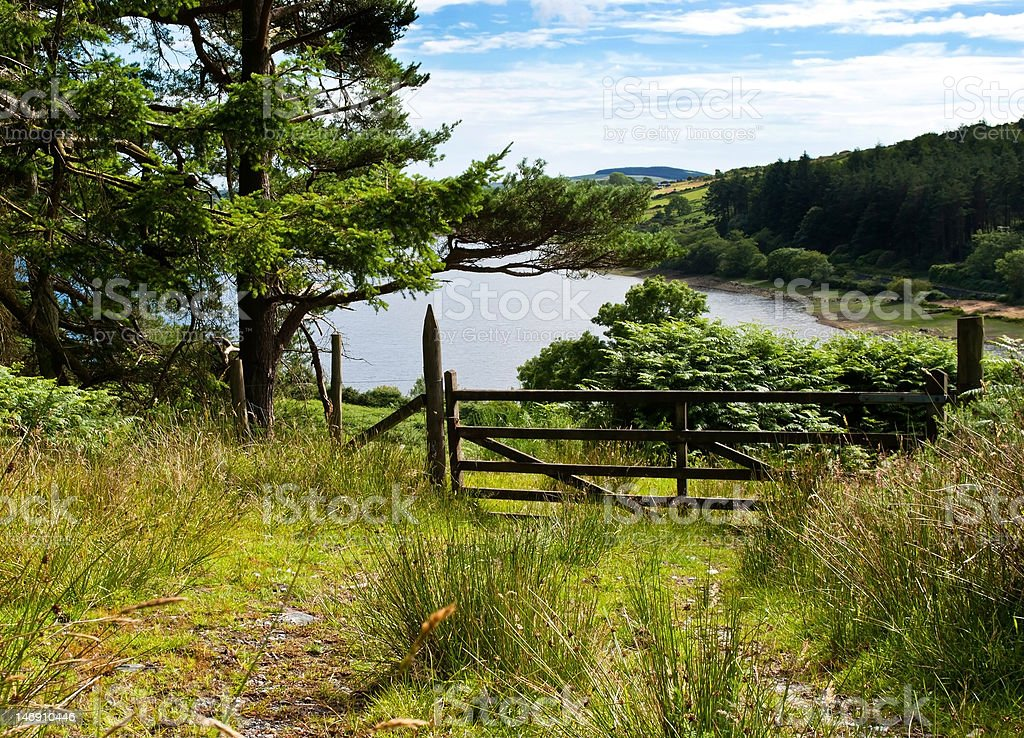 Forrest track with a gate overlooking beautiful lake royalty-free stock photo