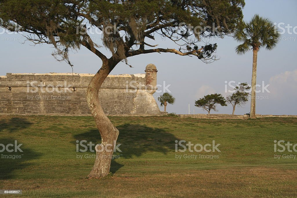 Fort and Tree stock photo