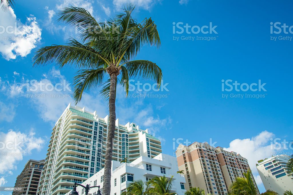 Fort Lauderdale palm trees art deco buildings stock photo