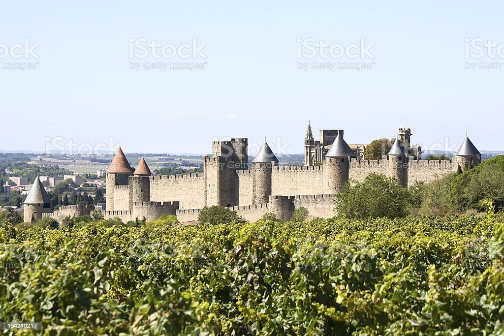 Fortress of Carcassonne and vineyard stock photo