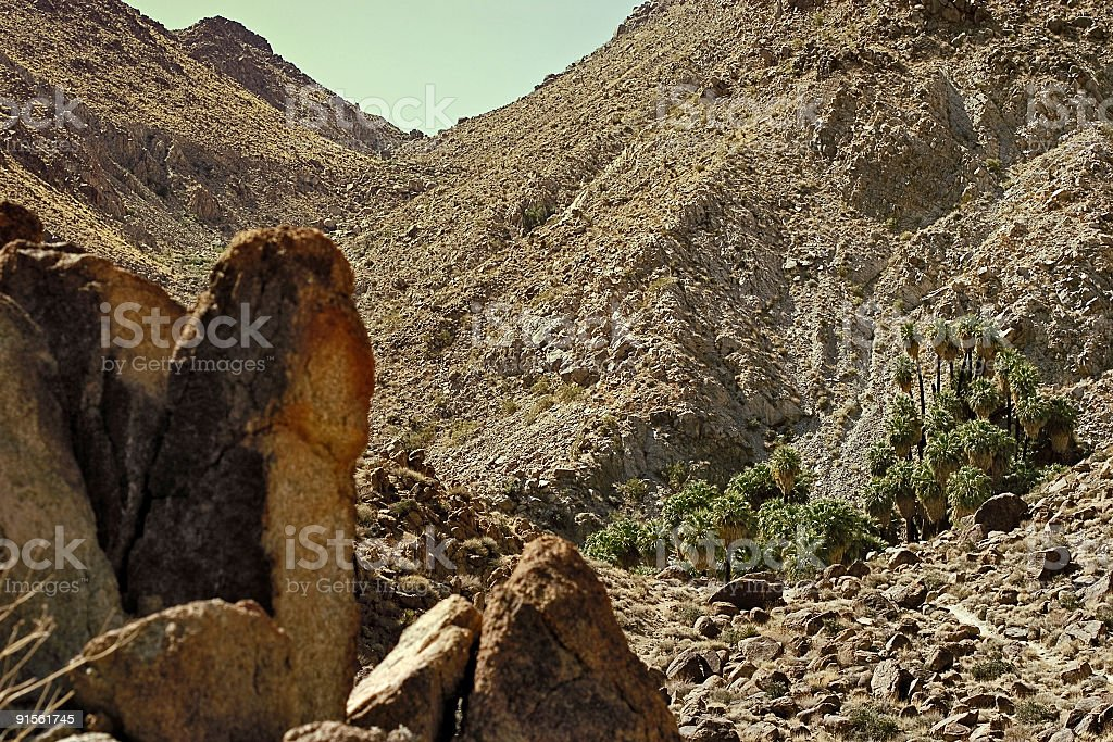 Forty Nine Palms Oasis royalty-free stock photo