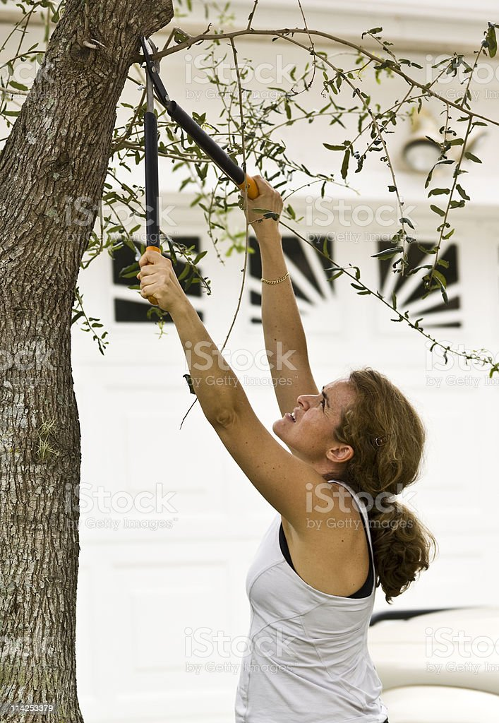 forty something housewife doing the garden royalty-free stock photo