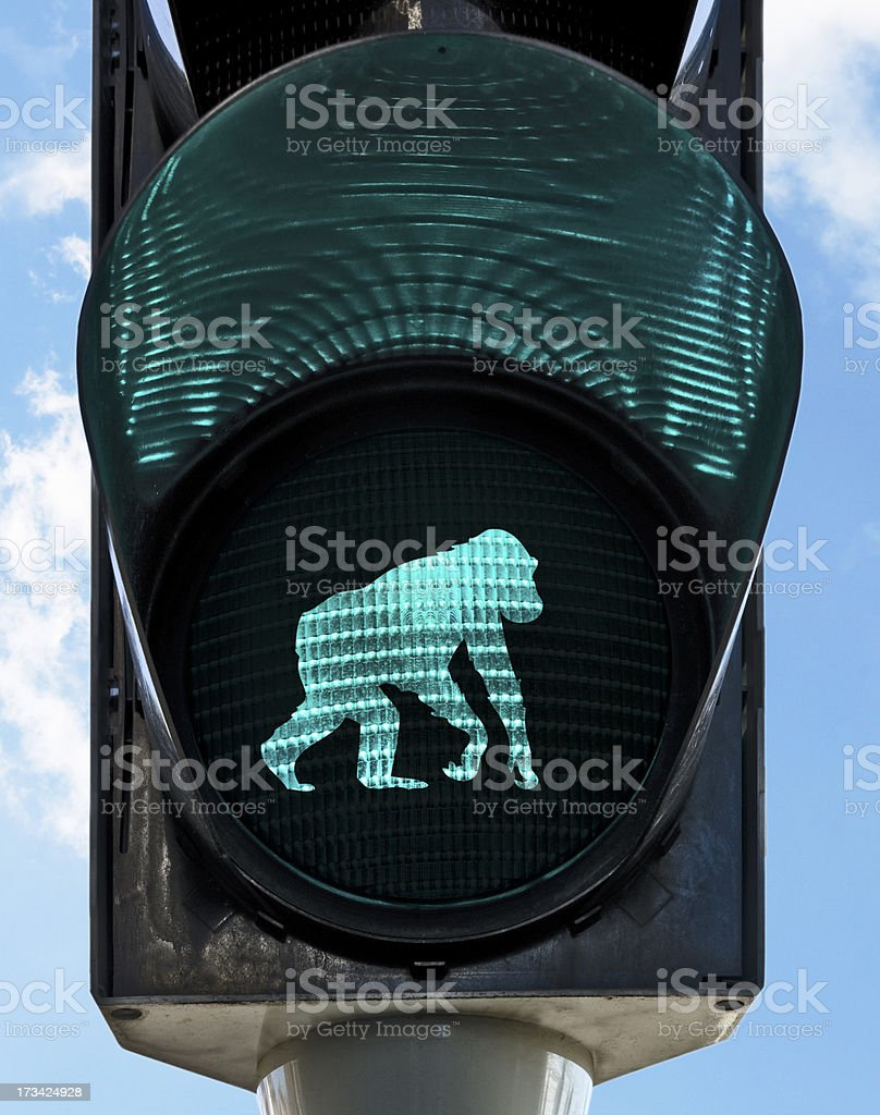 forward to the past stock photo