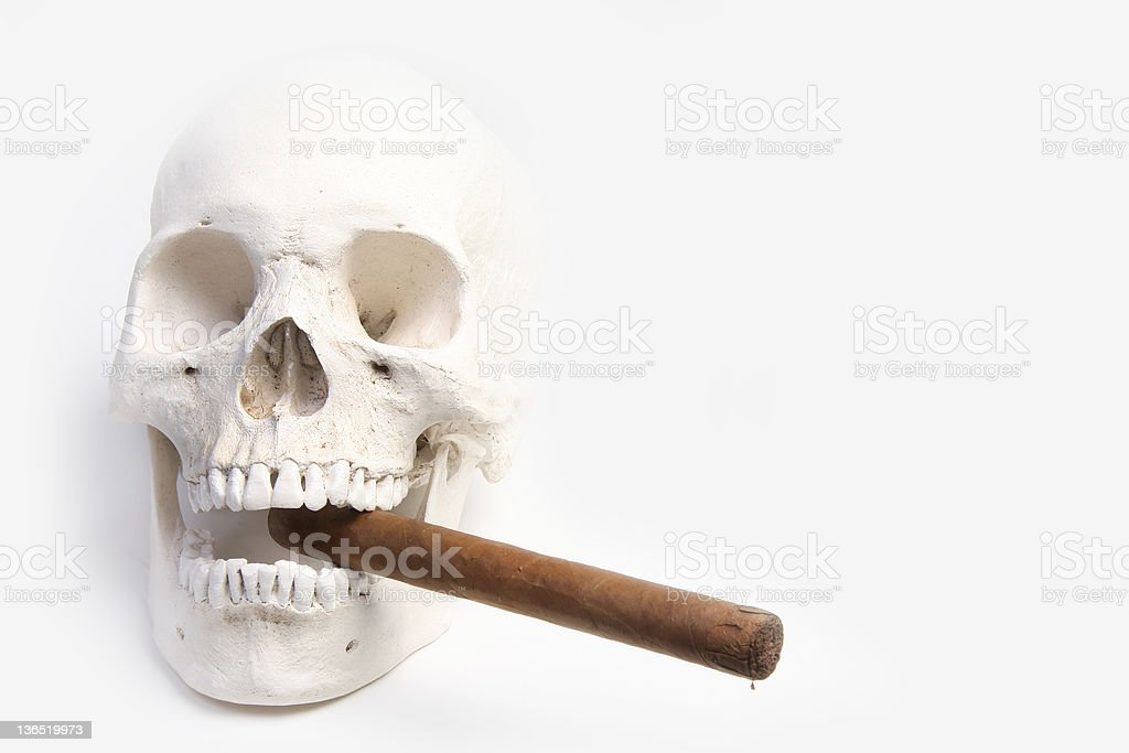 Fossil skull and cigar royalty-free stock photo