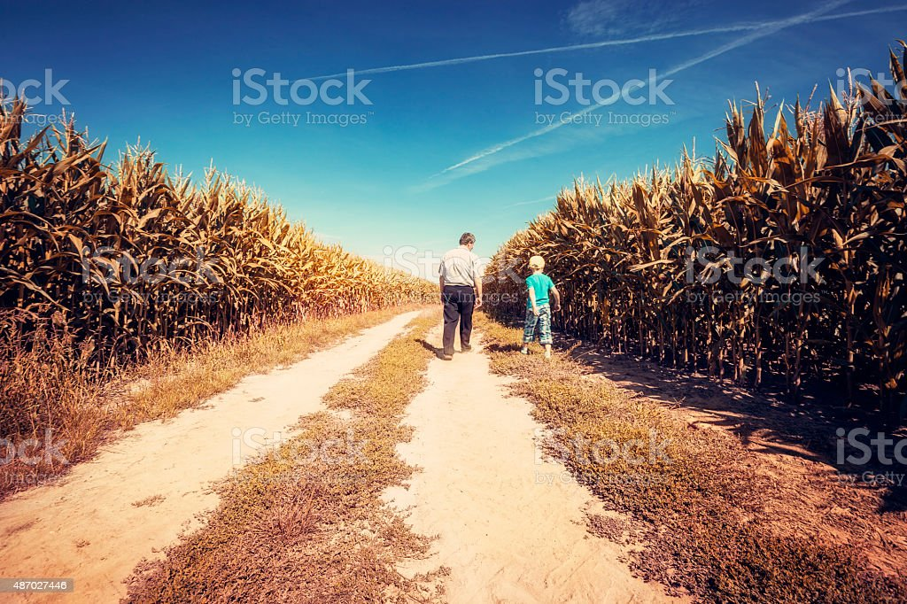 Fother and son in a field stock photo