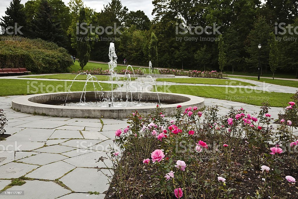 Fountain and roses in a park. royalty-free stock photo