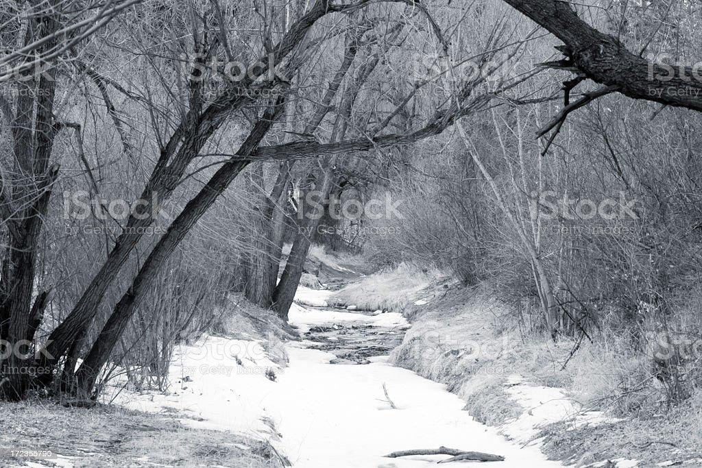 Fountain Creek royalty-free stock photo
