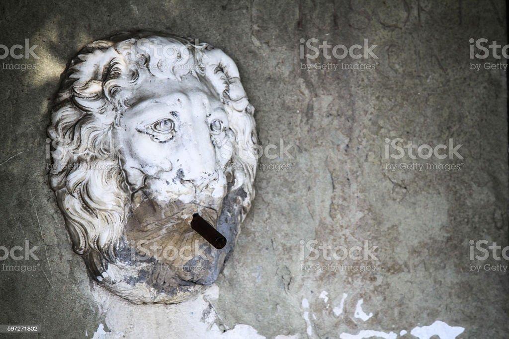fountain lion stock photo