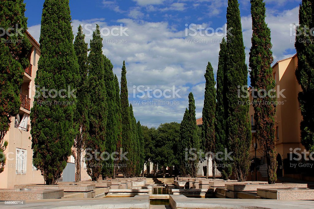 fountain with trees stock photo
