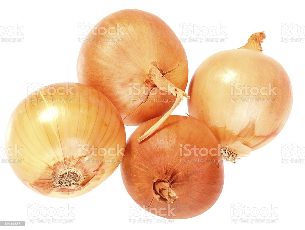 Four a orange fresh onions royalty-free stock photo