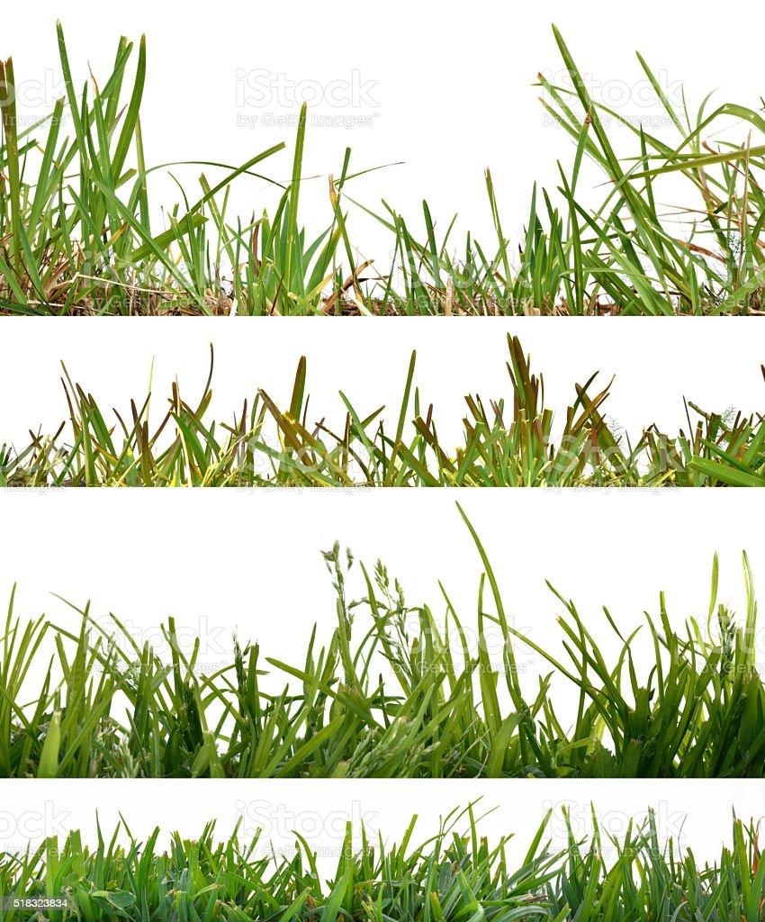 Four backgrounds set grass stock photo