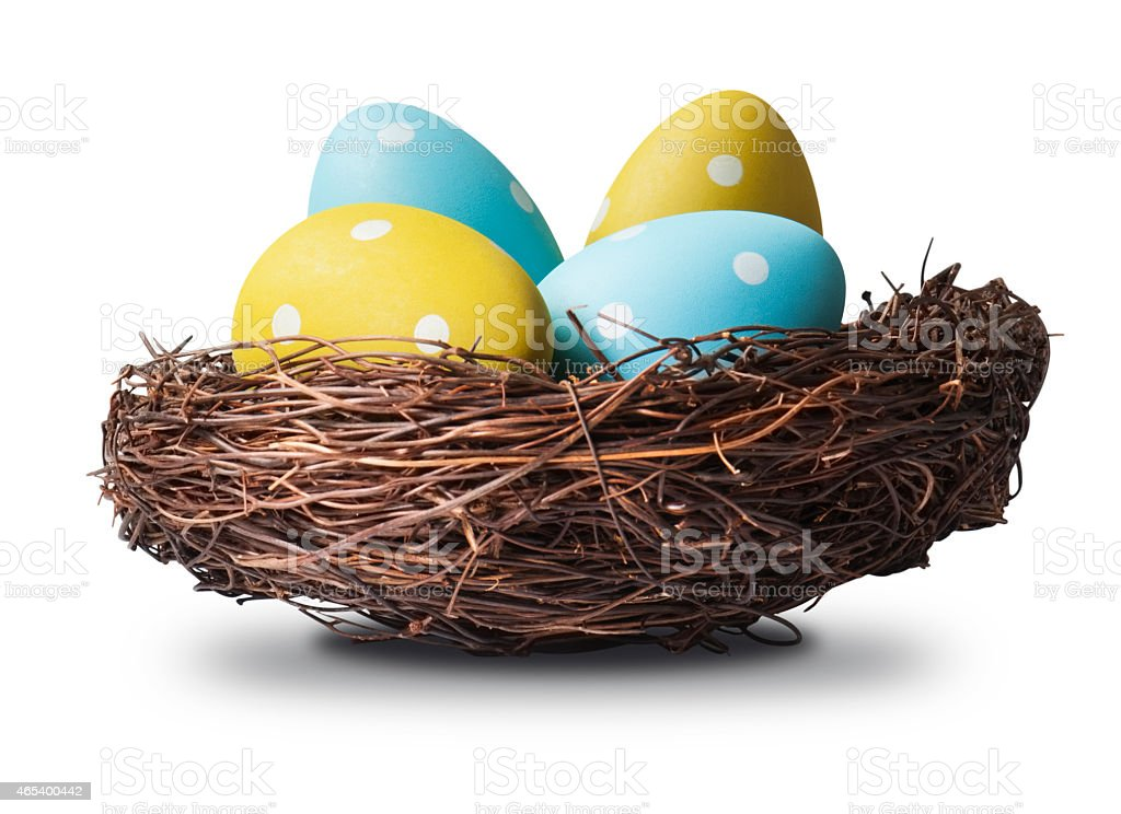 Four blue and yellow easter eggs in a birds nest stock photo
