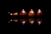 Four brown chestnuts isolated on black reflective background