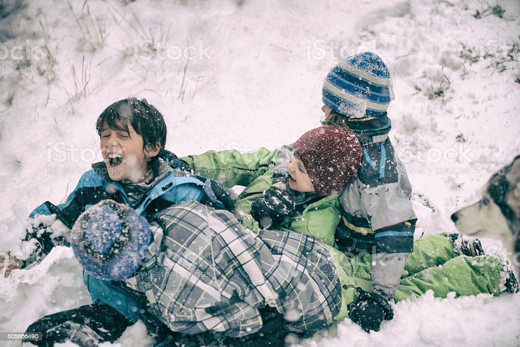 Four children sled and crash while a dog watches stock photo