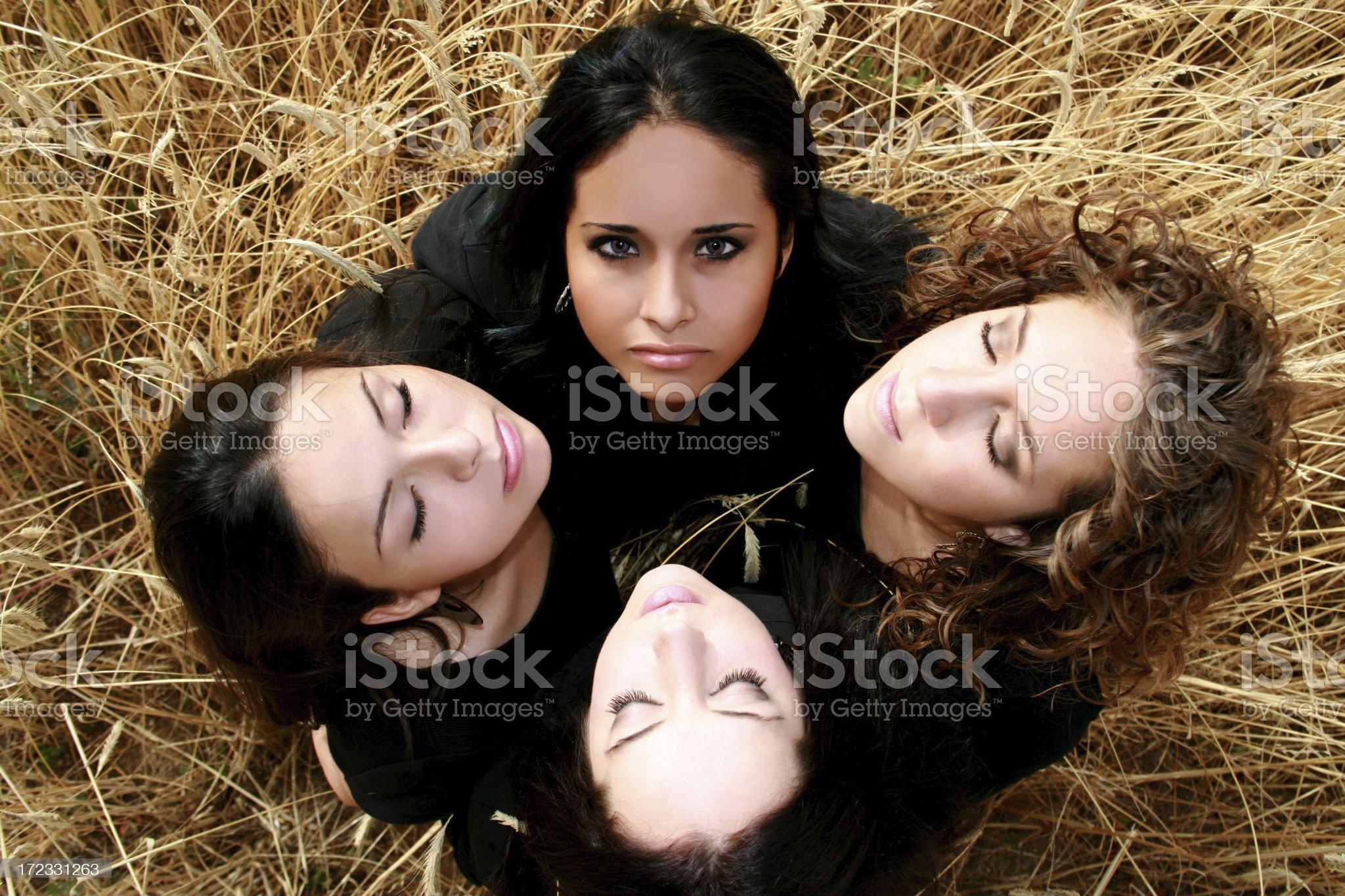 Four Crows royalty-free stock photo