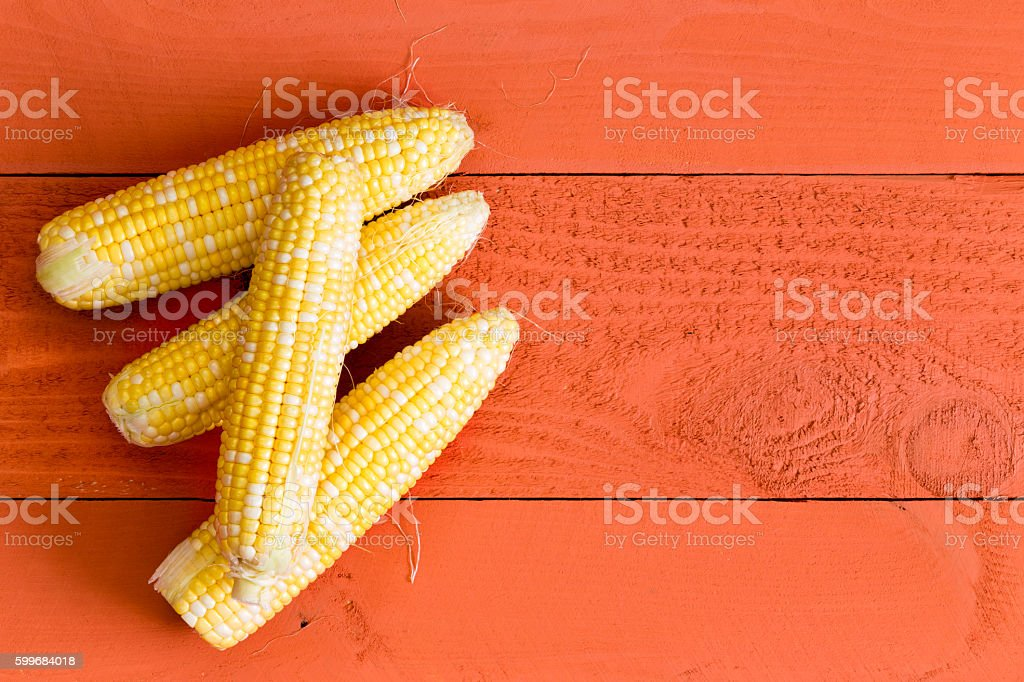 Four fresh sweet corn on the cob on orange stock photo