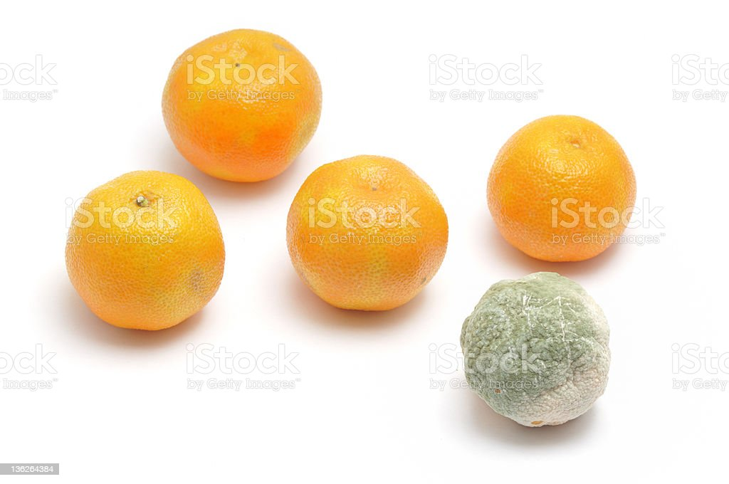 Four Good, one bad royalty-free stock photo