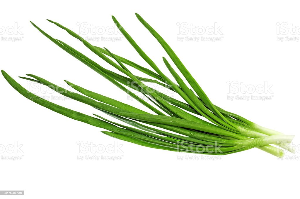 Four green onions on a white background stock photo