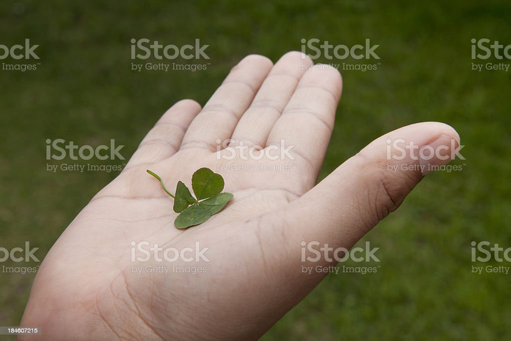Four leaf clover in the palm of a hand royalty-free stock photo