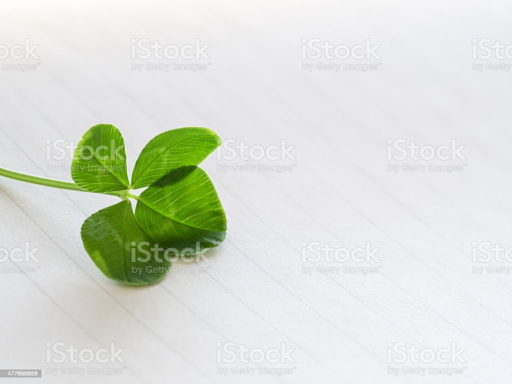 Four leaves and letter paper stock photo