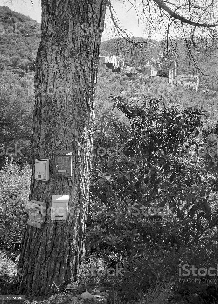 Four mailboxes in remote position in the woods stock photo