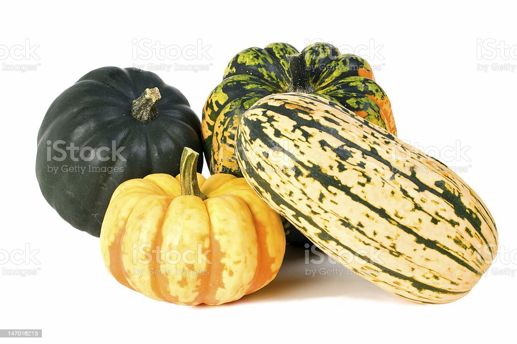 Four multicolored winter squash in different shapes stock photo
