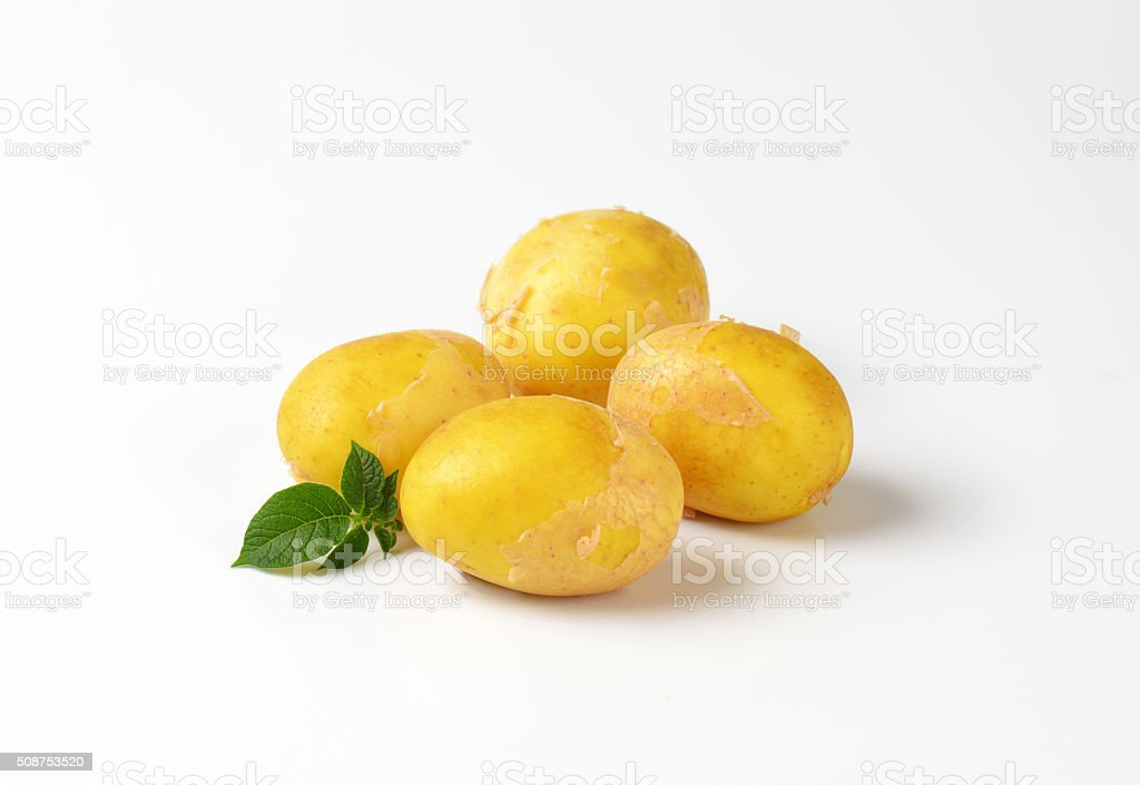 four new potatoes stock photo