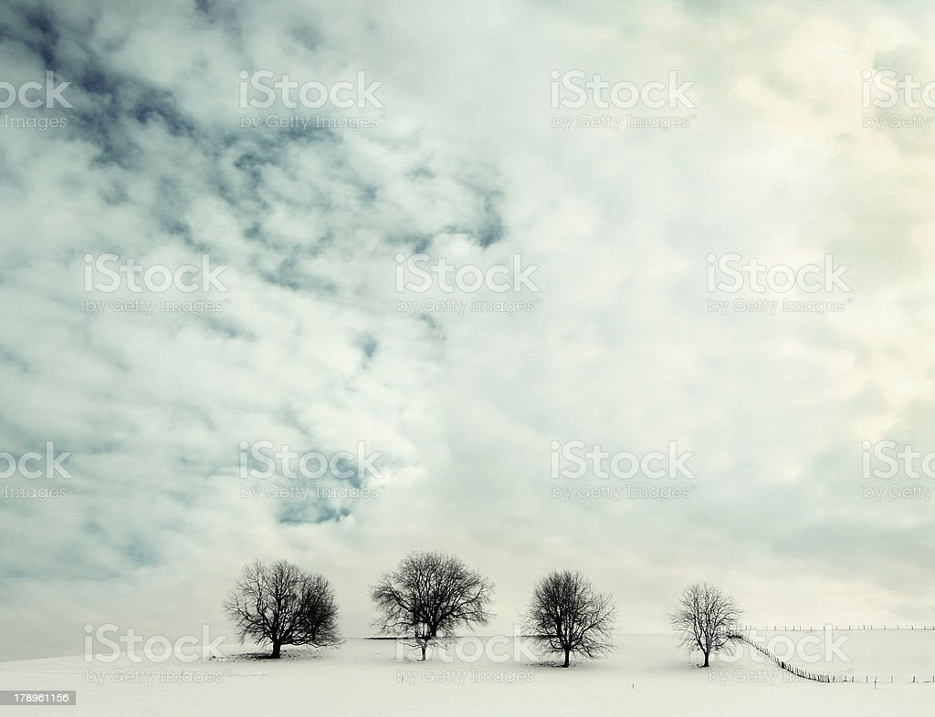 four of a kind royalty-free stock photo