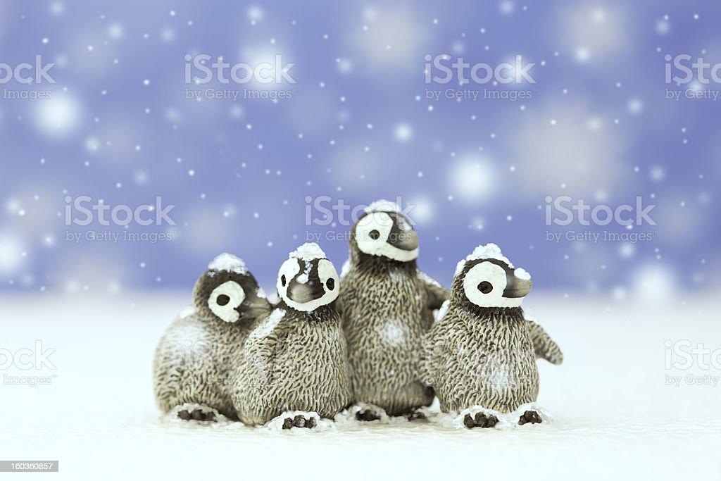 Four penguins royalty-free stock photo