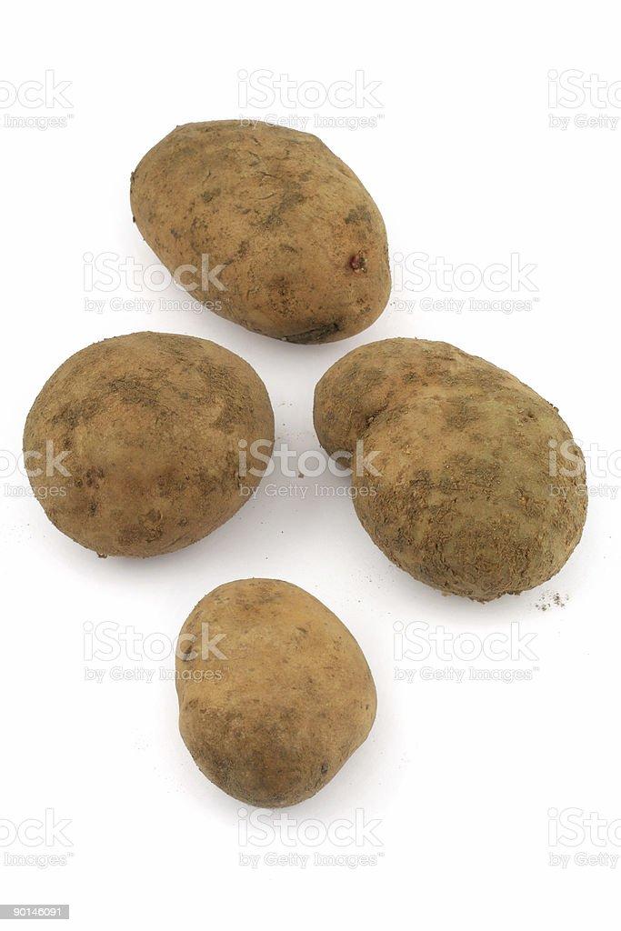 four potatos on white background royalty-free stock photo