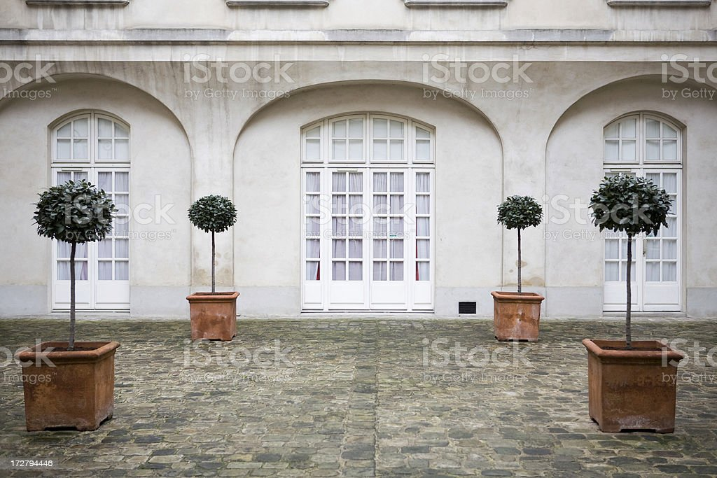 Four potted trees in a formal French entryway stock photo