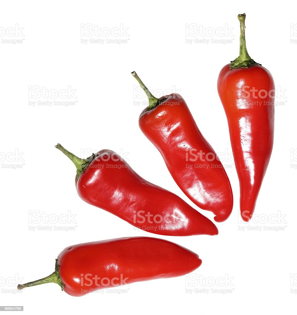 Four red hot chili peppers stock photo