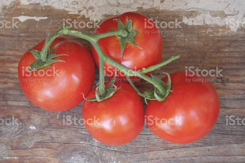 Four Red Tomatos royalty-free stock photo