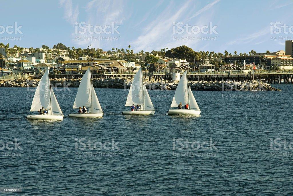 Four Sail royalty-free stock photo