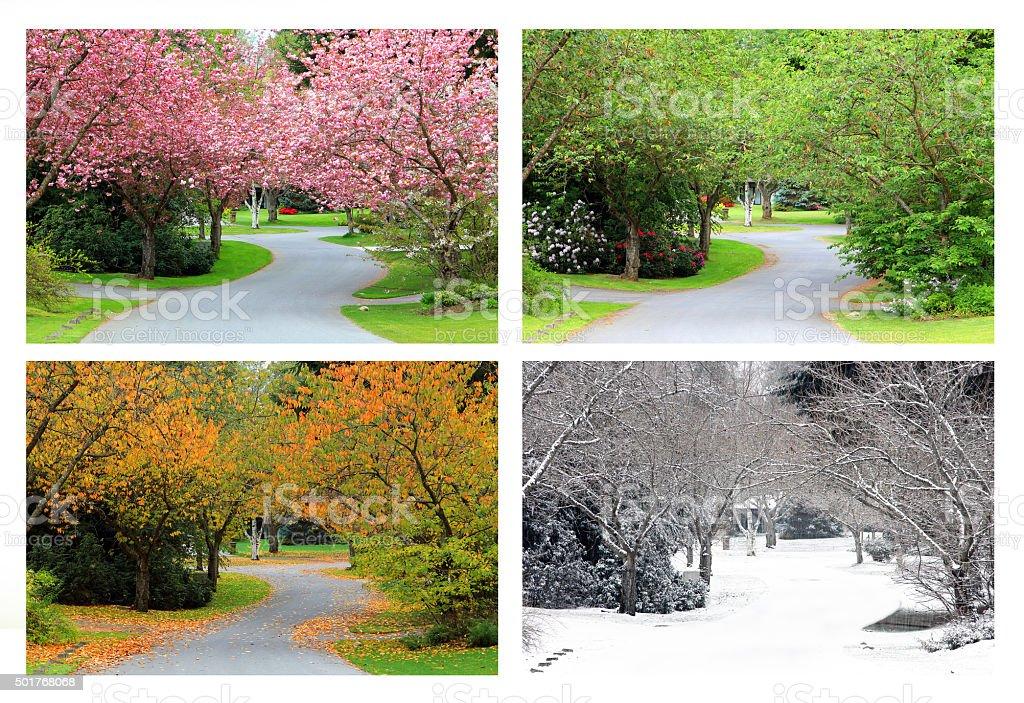 Four seasons on the same street. stock photo