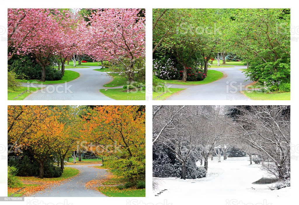 Four seasons on the same street. stock photo