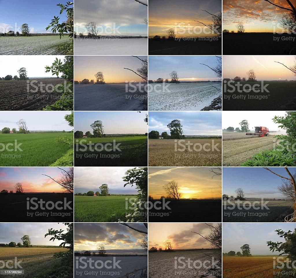 Four seasons - twenty photos stock photo