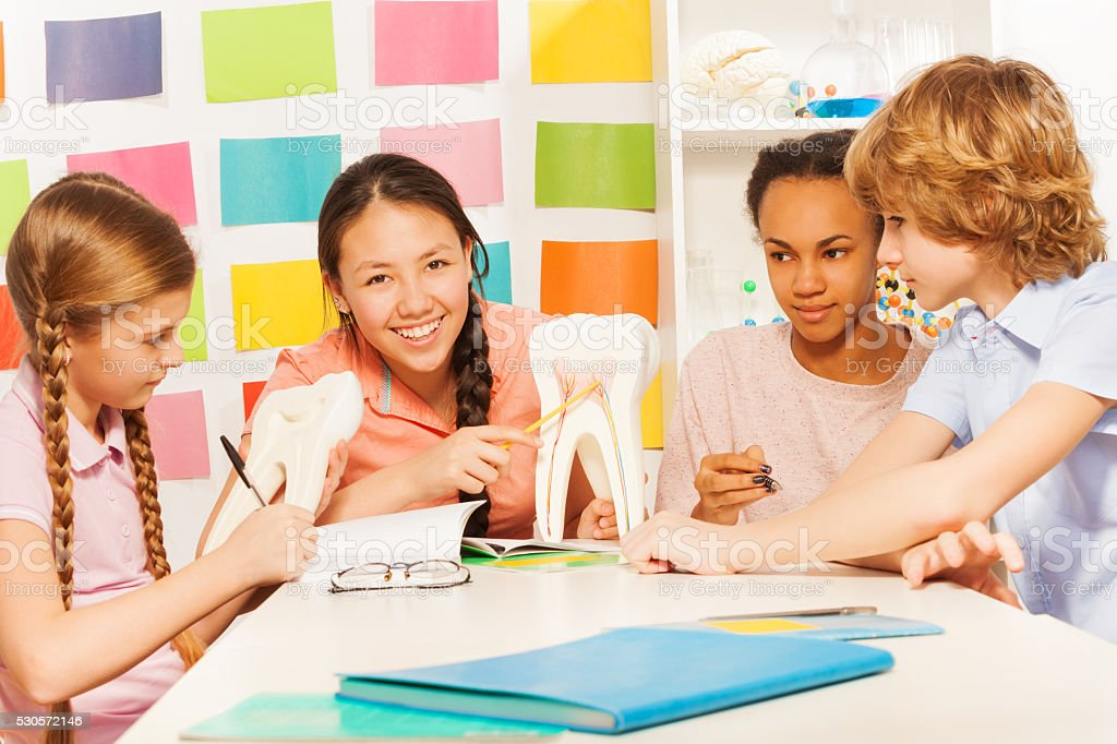 Four teenagers studying the anatomy at classroom stock photo