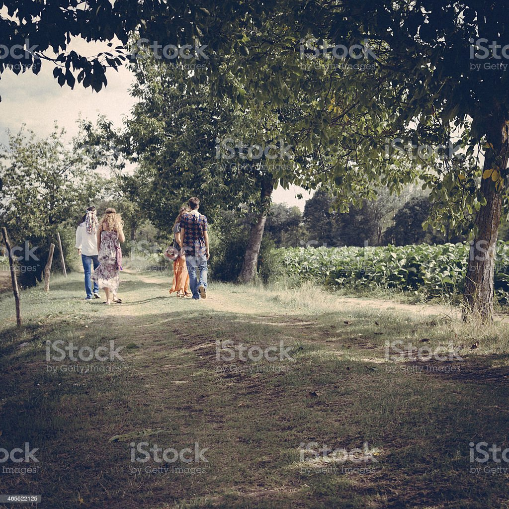 Four young adult hippie friends walking on countryside stock photo