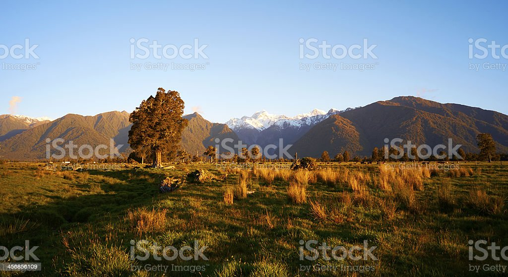 Fox Glacier Scenic stock photo