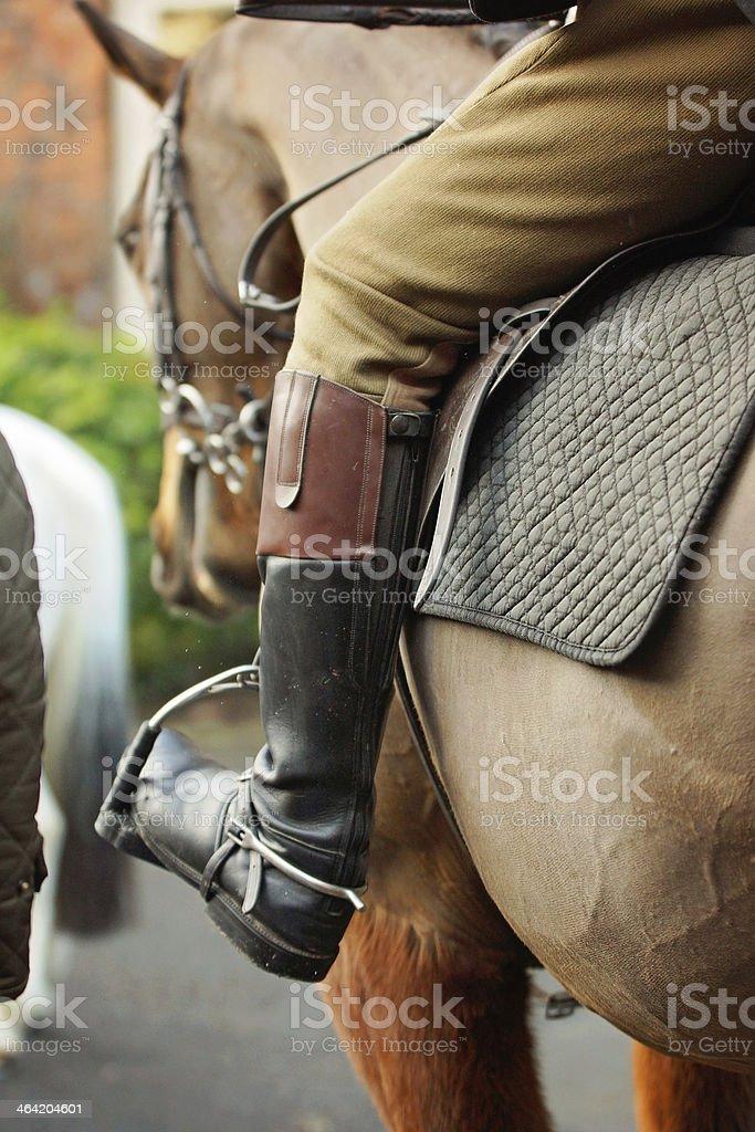 Fox Huntsman's leg stock photo