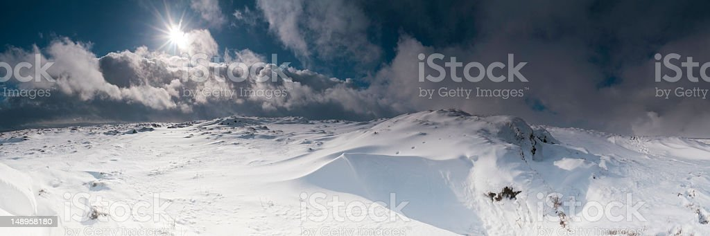 Fox prints in snowy wilderness stock photo