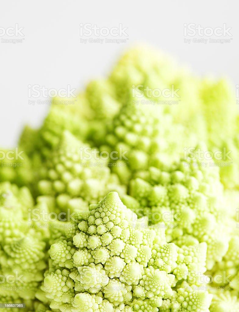 Fractal Cauliflower royalty-free stock photo