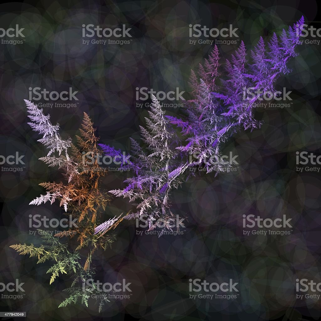 Fractal fern stock photo